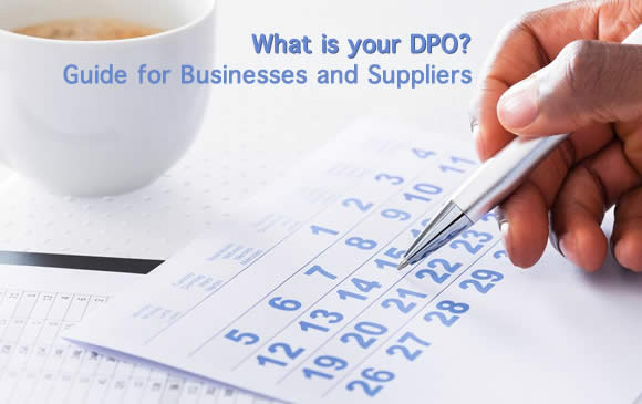 What is your DPO? - Guide for Businesses and Suppliers